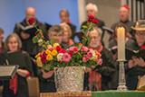 Eine Rose für jede und jeden in guter Tradition auch Martin Luthers (Foto: Christian Oeser)