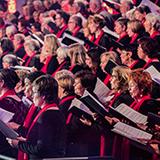 Der  Chor der 500 Stimmen